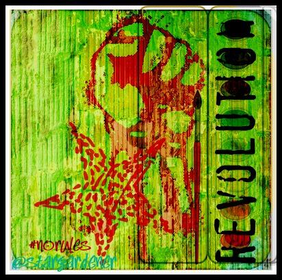 Revolution (licence Creative commons  Teresa Robinson stargardener)